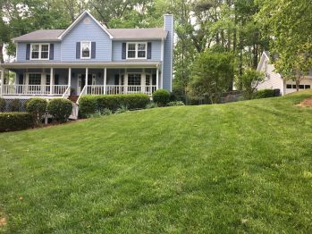 roswell lawn maintenance